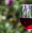 Prosseguem em outubro as sessões do Lagoa Wine Experiences 2021