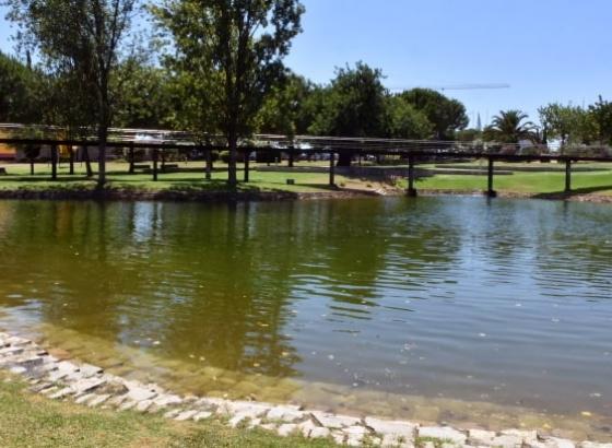 Lago do Jardim das Comunidades em Almancil foi alvo de limpeza profunda (C/Vídeo)