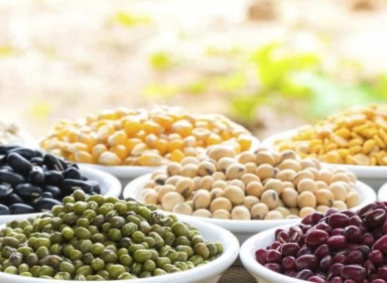 Importância das leguminosas à mesa em destaque no interior do concelho de Loulé