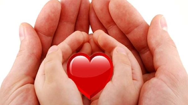 Vem ai o Dia Europeu da Doação de Órgãos
