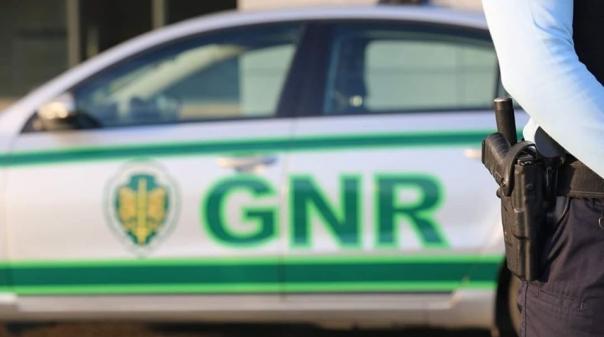 Albufeira:GNR detém quatro pessoas suspeitas de furtar alfarroba