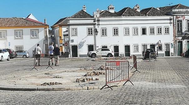 Glocal Faro critica arranque de árvores no Largo da Sé, Presidente diz que estavam «em mau estado»