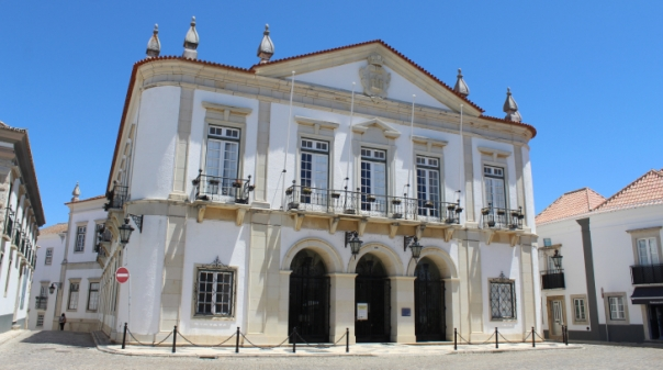 PAN questiona Câmara de Faro sobre remoção de árvores no Largo da Sé