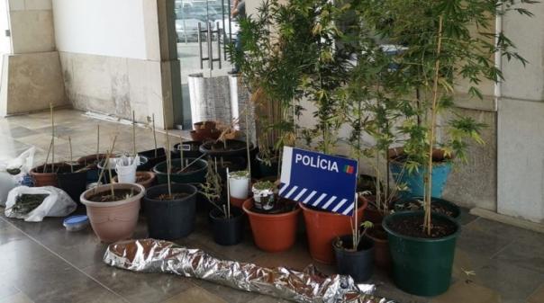 VRSA:Detido por tráfico de droga fica em liberdade