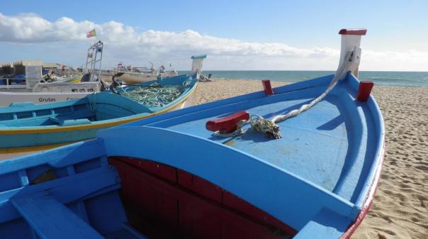 """BE questiona Governo sobre """"limites"""" da área marinha protegida na Baía de Armação de Pera"""