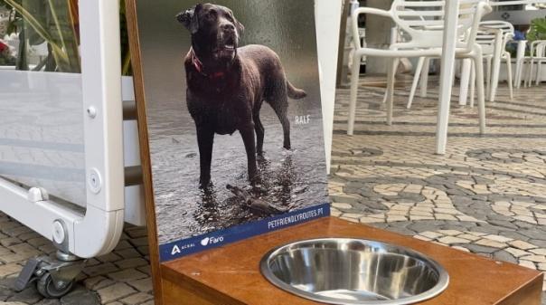 """Faro mais amigo dos animais com projeto """"Pet-Friendly Routes"""""""