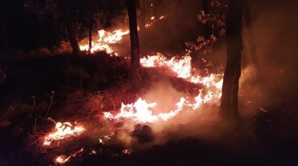 Incêndio: Autoridades esperam dominar o fogo de madrugada