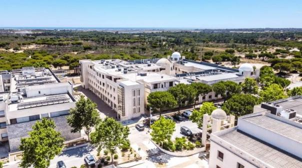 Universidade do Algarve abre candidaturas a reitor para mandato de quatro anos