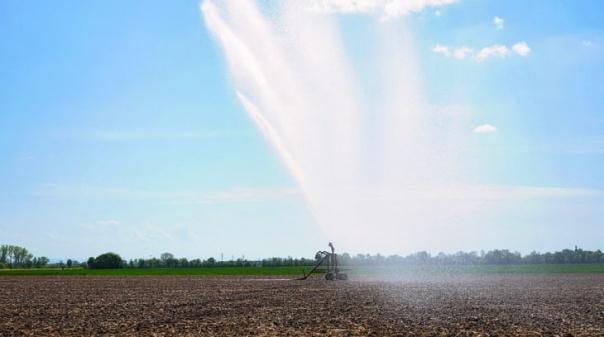 IPMA: Sotavento algarvio em seca severa, Barlavento em moderada