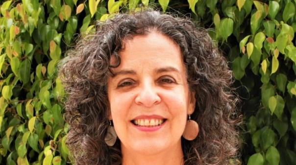 Autárquicas: PAN quer apoio veterinário público em Faro e campanhas de esterilização