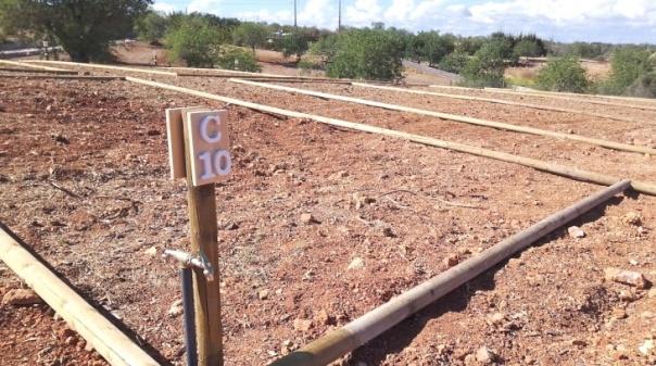 Albufeira abre candidaturas para Hortas Comunitárias